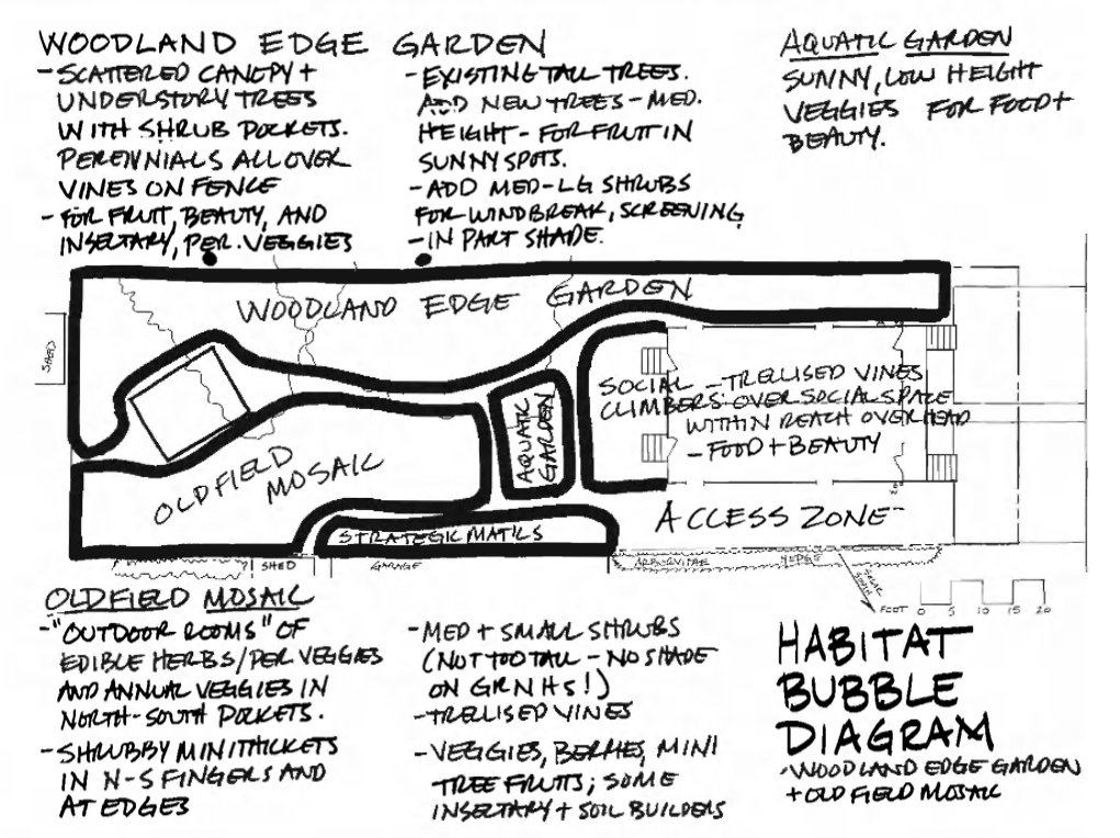 Design Example Sketch Habitat Bubble Diagram sketch by Dave Jacke from Edible Forest Gardens