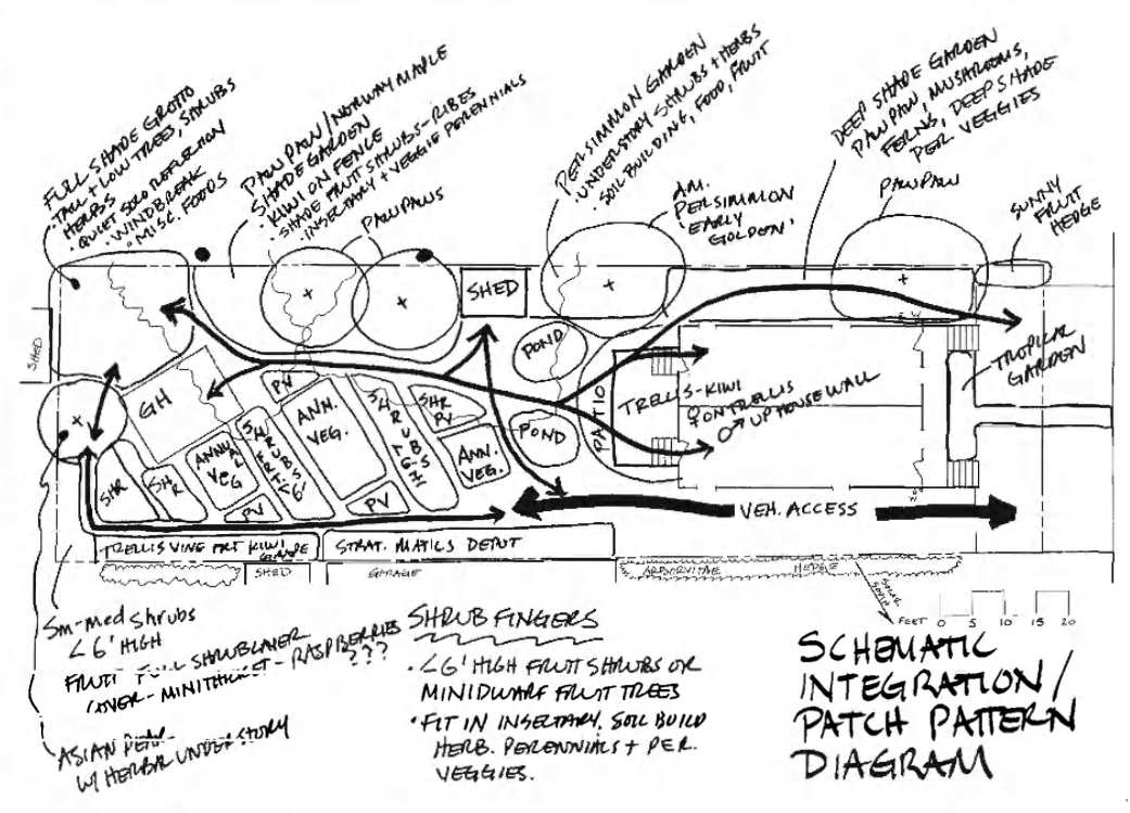 Design Example Sketch Schematic Design Example by Dave Jacke from Edible Forest Gardens