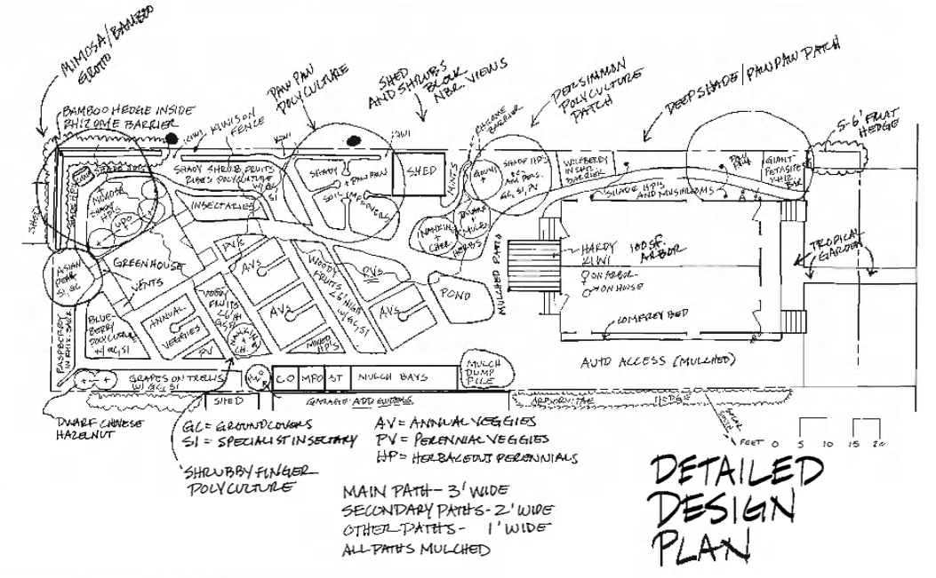 Detailed Design Example Sketch by Dave Jacke from Edible Forest Gardens